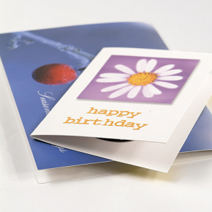 280gsm Gloss Greeting Cards