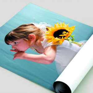 180gsm Uncoated Posters