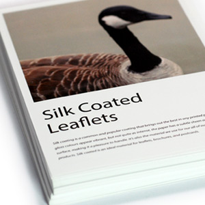Silk Coated Leaflets